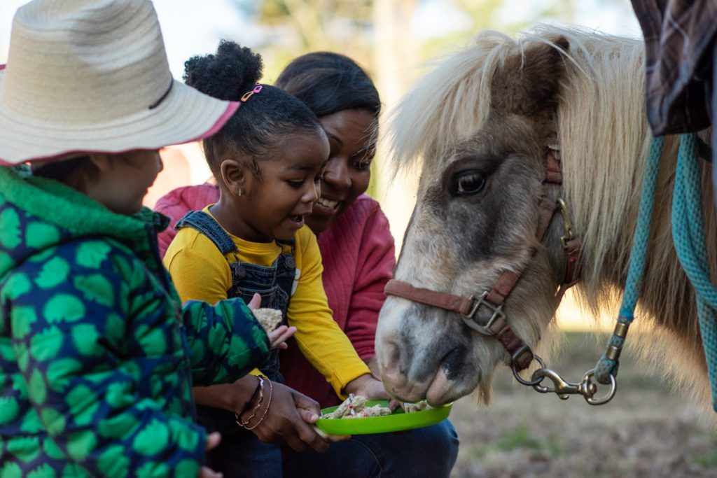 Elijah Murphy, Hannah Edgerton, and Sheba Edgerton take turns feeding a miniature pony at Old Mill Farm in Durham, NC.