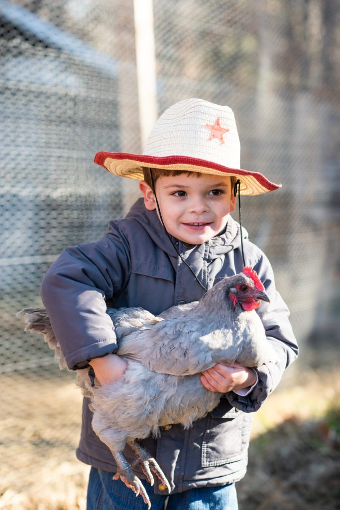 Jovan Murphy holds a chicken as he learns about life and farming at Old Mill Farm in Durham, NC.