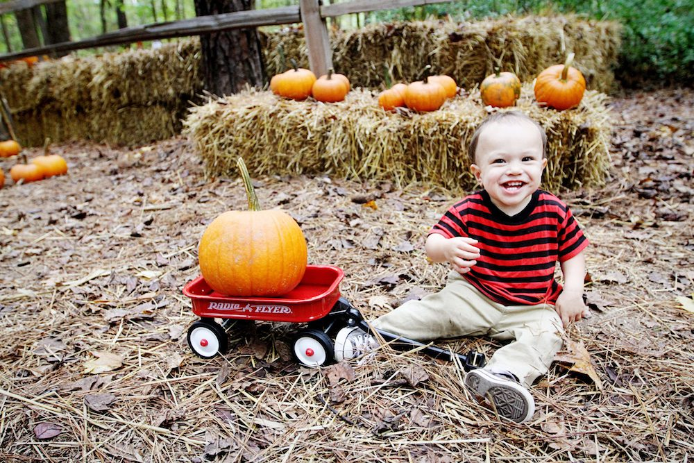 weekend events - Pumpkin Patch Express
