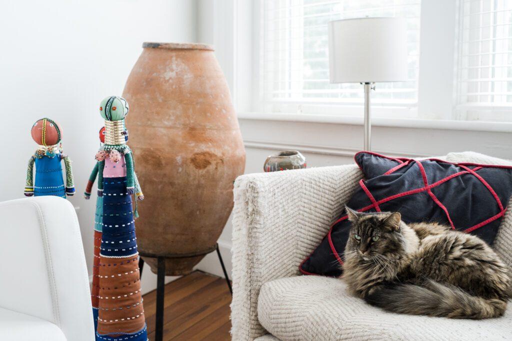 Lyn McClay's cat Koko