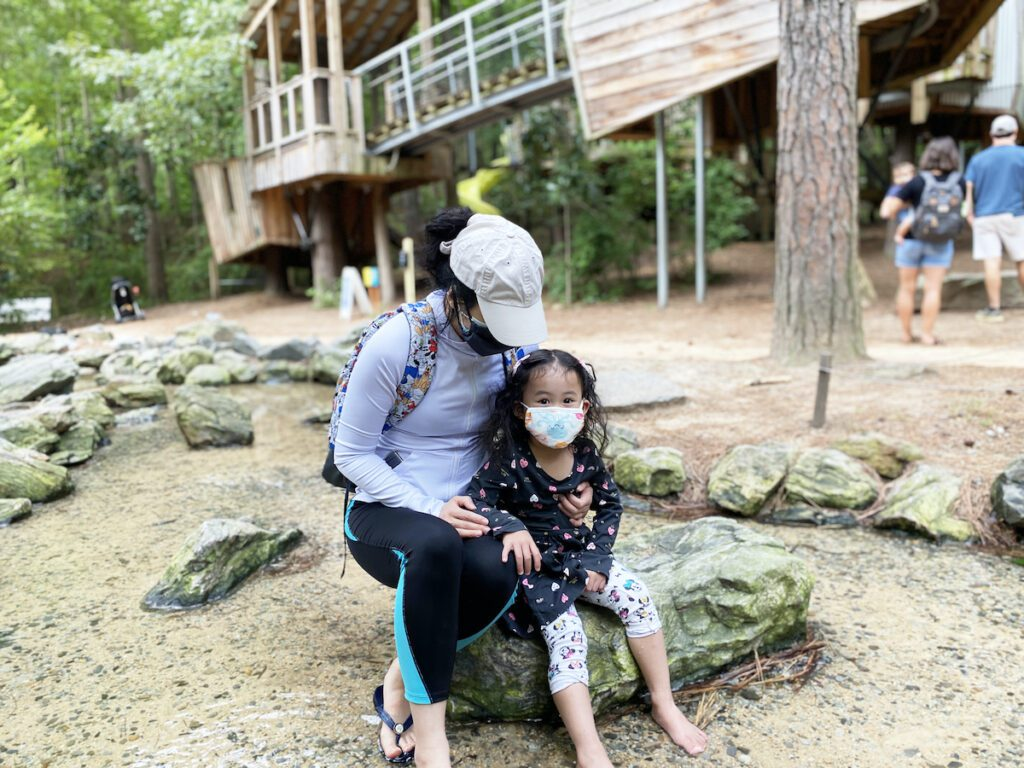 Staycation: Museum of Life and Science