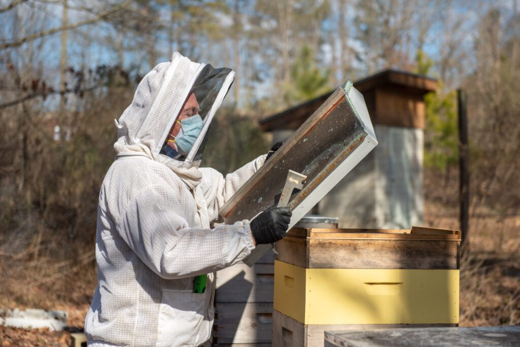 Rich Draney checks in on the garden's beehives at Briggs Avenue Community Garden.