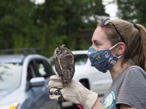 woman holding owl