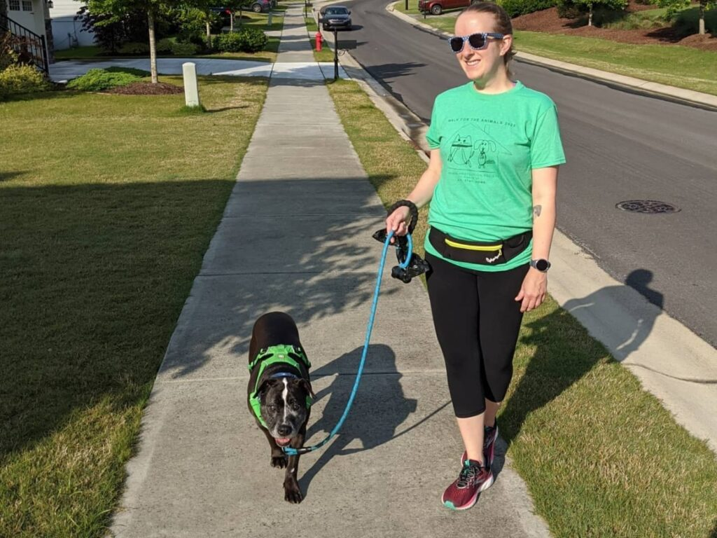 Walk for the Animals happening Memorial Day weekend