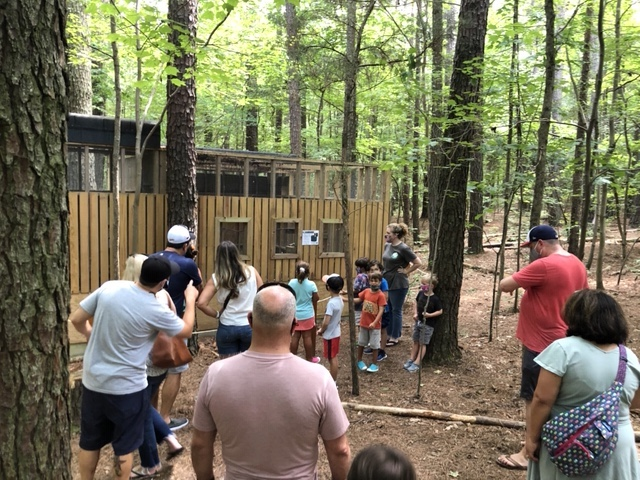 Spend your weekend tasting delicious local barbecue and visiting birds at Piedmont Wildlife Center