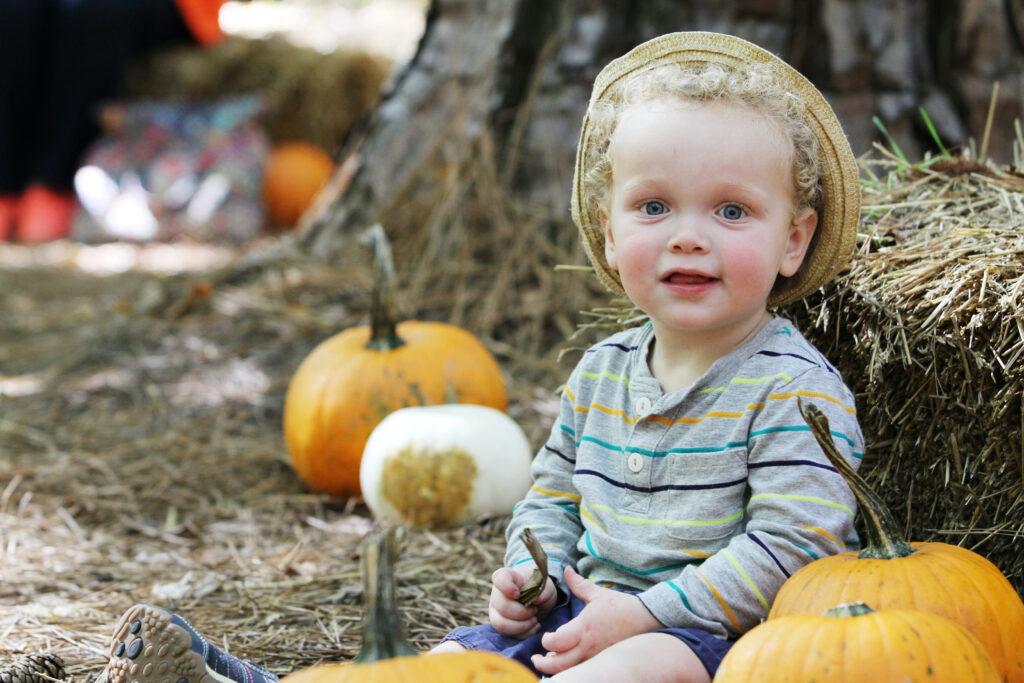 fall weekend events – Pumpkin Patch